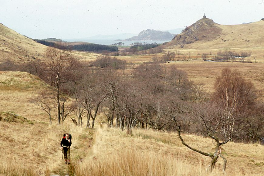 A hiker walks out of Knoydart woodland